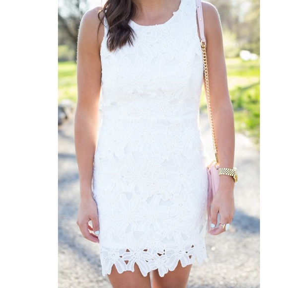 Astr Dresses & Skirts - Astr the label- white lace dress